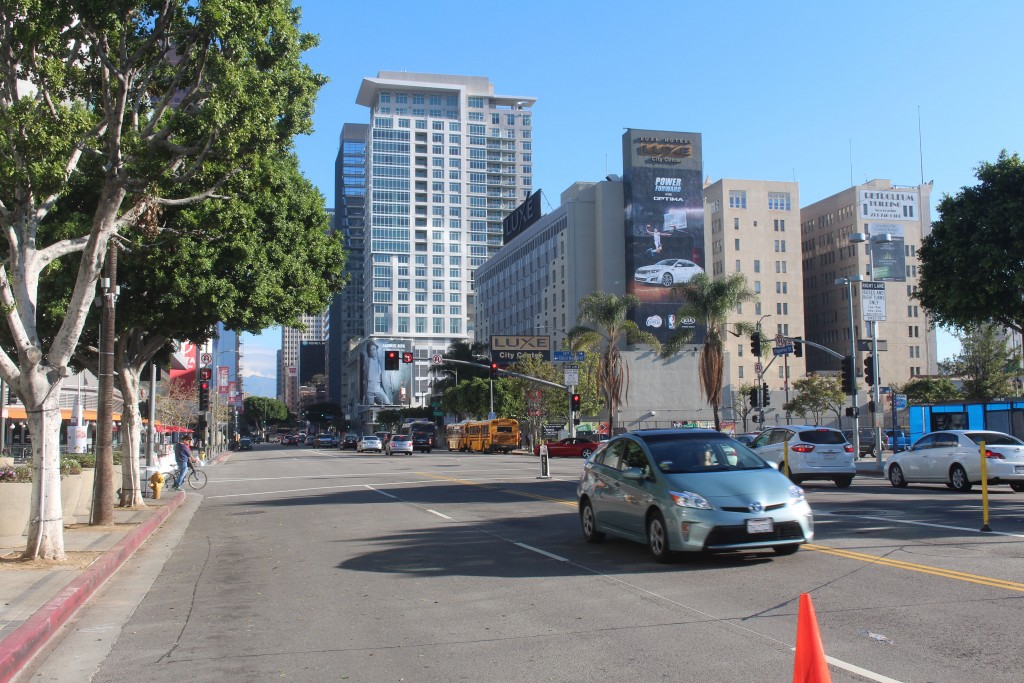 A newly rejuvenated downtown is experiencing one its best boom years.