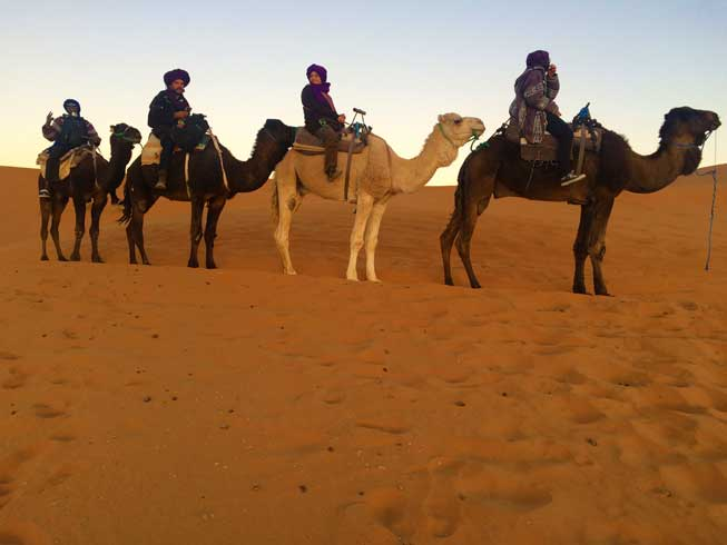 Tourists About to Embark On A Camel Trek Of The Merzougha Desert In Morocco