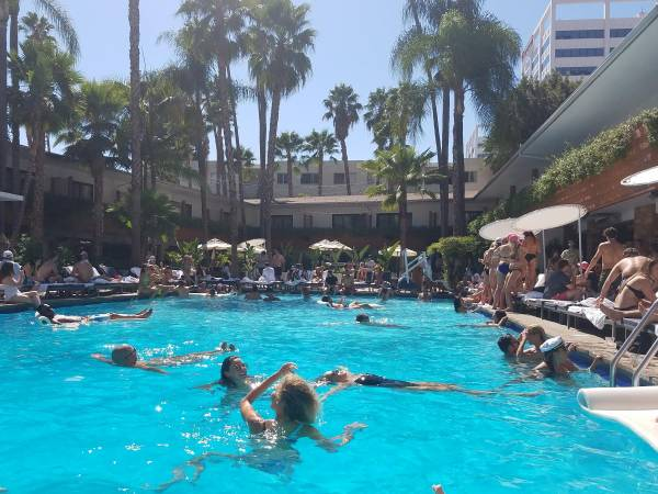 The Pool At The Roosevelt Hollywood